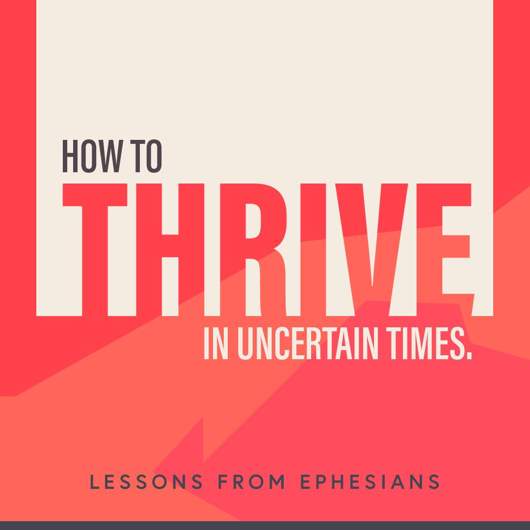 Thrive Series